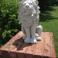 KISS-ing will make you feel like a Lion (so will exercise). Passed on my daily jog while visiting my husband in Tennessee this spring.